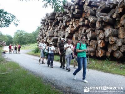 Ruta senderismo Peñalara - Parque Natural de Peñalara; free trekking; viajes mayo senderismo